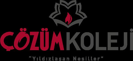 Çözüm Okulları Logo